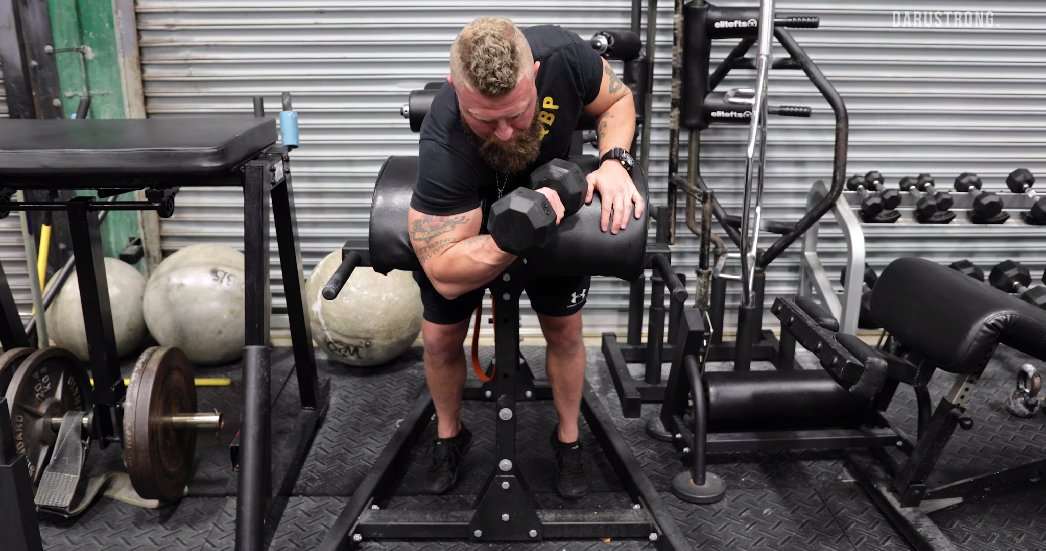 4 Arm Exercises to Increase Punching Power 3