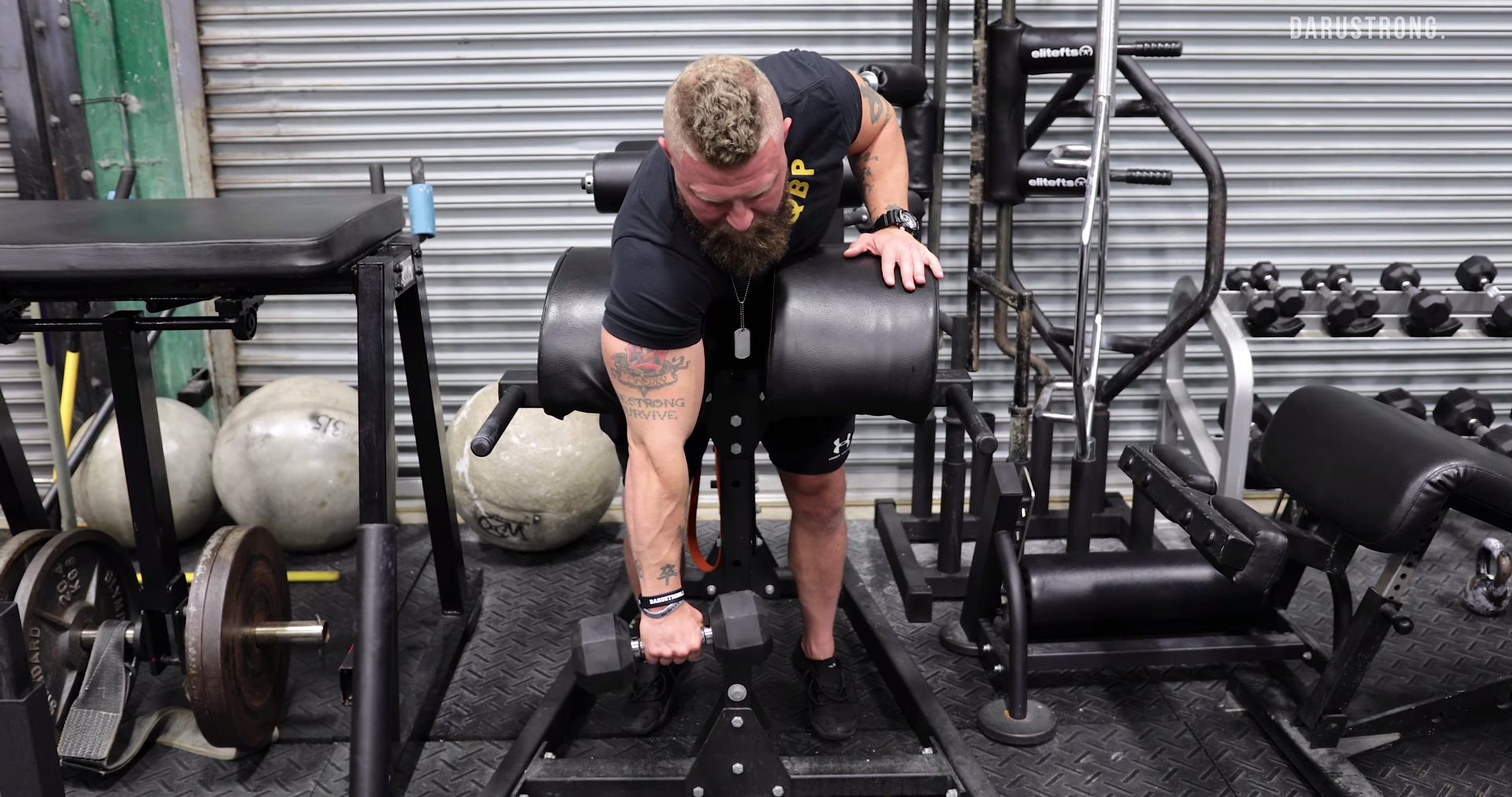 4 Arm Exercises to Increase Punching Power 4
